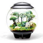 biOrb AIR 60 szary- terrarium-las-w-kuli-kompozycja