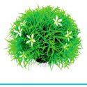 biOrb - 46086 kula roślin ze stokrotkami