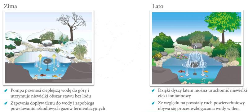 oase-49992-Ice-Free-4-Seasons-opis-lato-zima-ryby-oczko-wodne