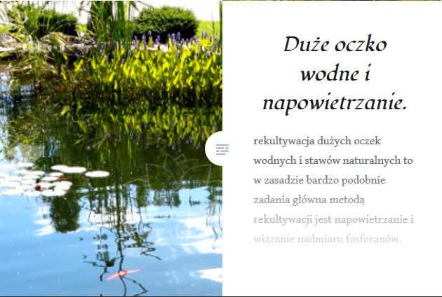 oczko_wodne_blog