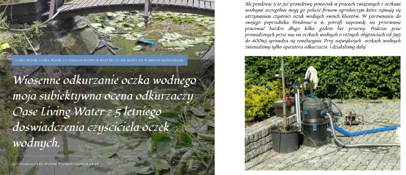 pondovac-5-blog-oczko-wodne-accesgarden.jpg